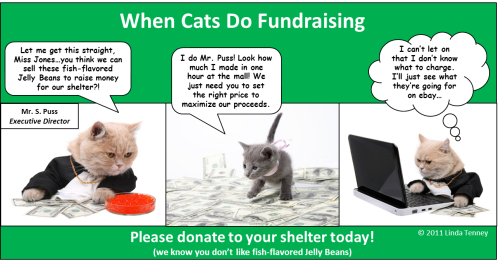 Animals - Fundraising